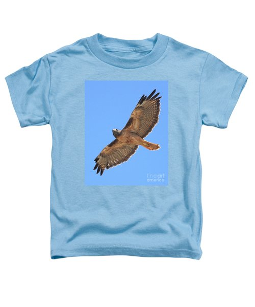 Red Tailed Hawk In Flight Toddler T-Shirt