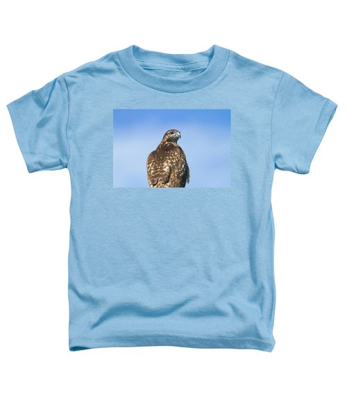 Red-tailed Hawk Perched Looking Back Over Shoulder Toddler T-Shirt