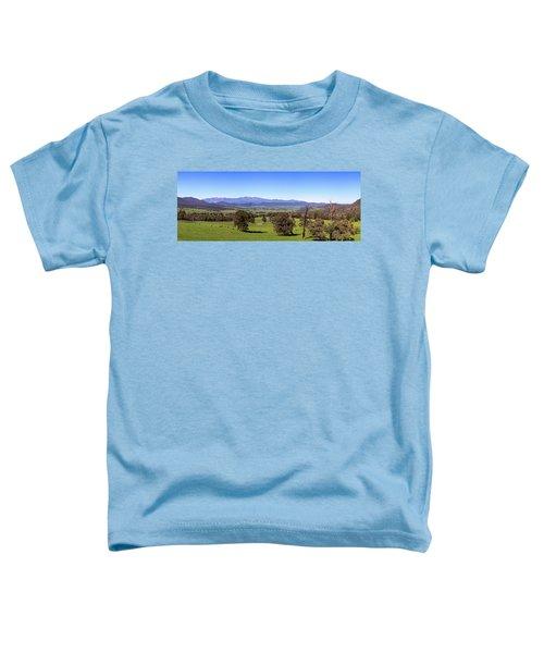 Rosewhite Spring Toddler T-Shirt