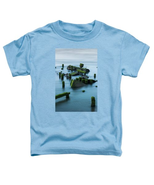 Ruins Of The Day Toddler T-Shirt