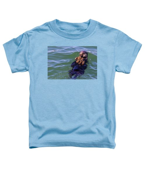 Sea Otter With Lunch Toddler T-Shirt