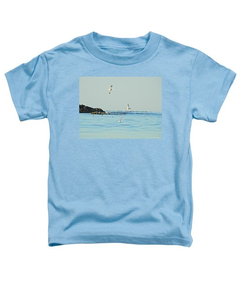 Soaring Seagull Toddler T-Shirt