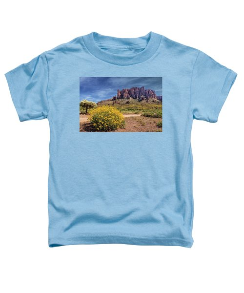 Springtime In The Superstition Mountains Toddler T-Shirt