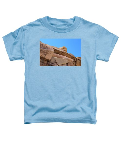 Stone  Arch In Joshua Tree Toddler T-Shirt
