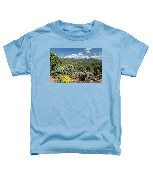 Summer In Santa Fe Toddler T-Shirt