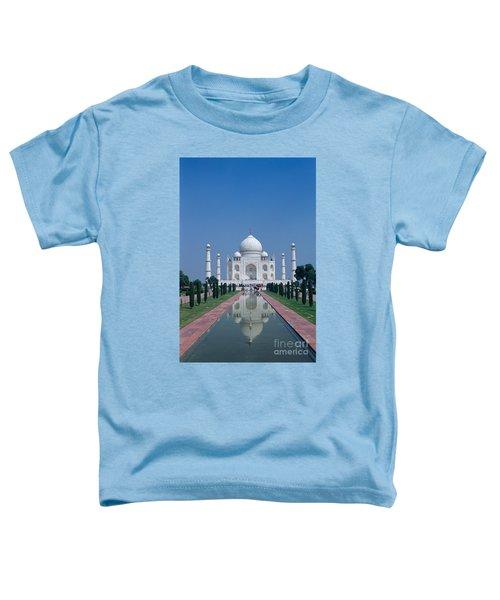 Taj Mahal View Toddler T-Shirt