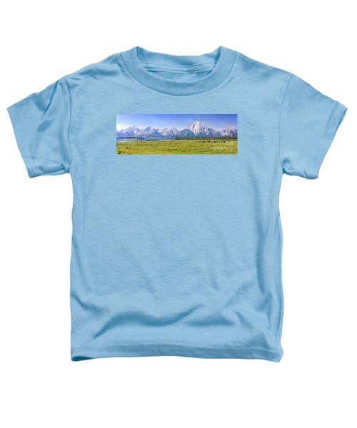 Teton Panorama Toddler T-Shirt
