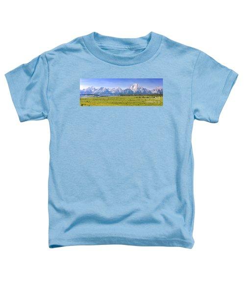 Teton Panorama Toddler T-Shirt