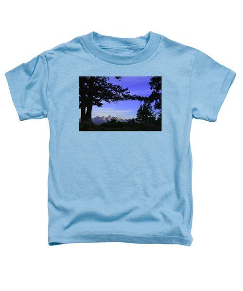 Tetons From The Wedding Trees Toddler T-Shirt