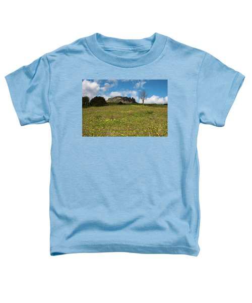 The Three Finger Mountain Toddler T-Shirt