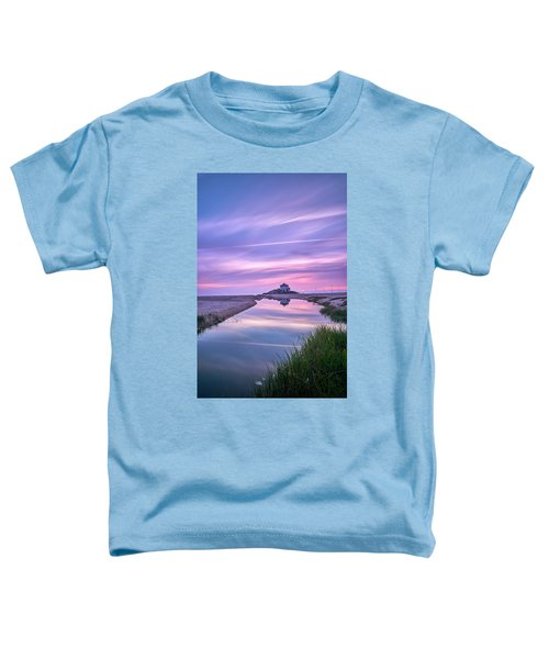The True Colors Of The World Toddler T-Shirt