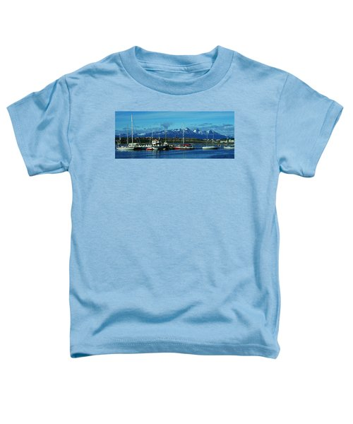 Tierra Del Fuego Toddler T-Shirt