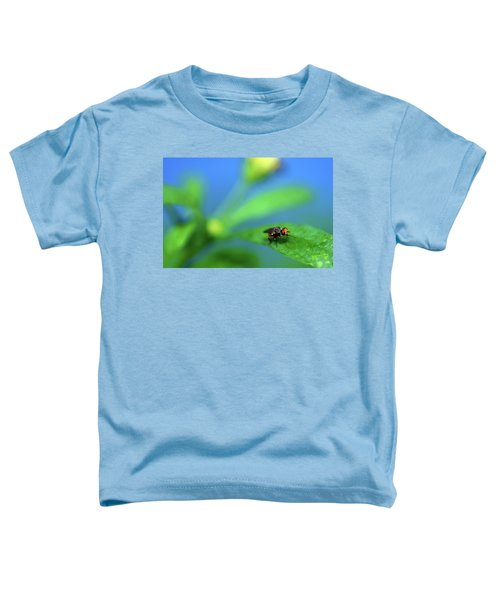 Tiny Fly On Leaf Toddler T-Shirt