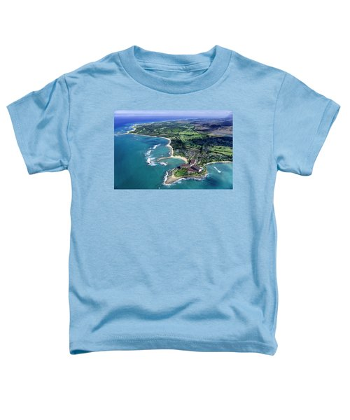 Turtle Bay - Looking East Toddler T-Shirt