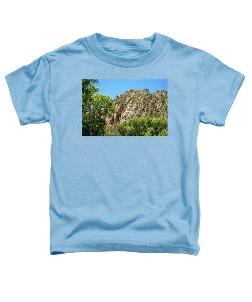 Unsolvable Toddler T-Shirt