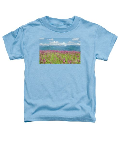 Wildflower Meadows And The Carpathian Mountains, Romania Toddler T-Shirt