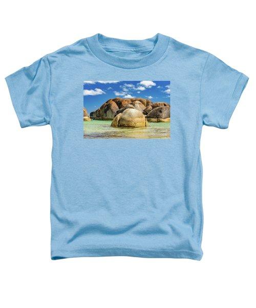 William Bay Toddler T-Shirt