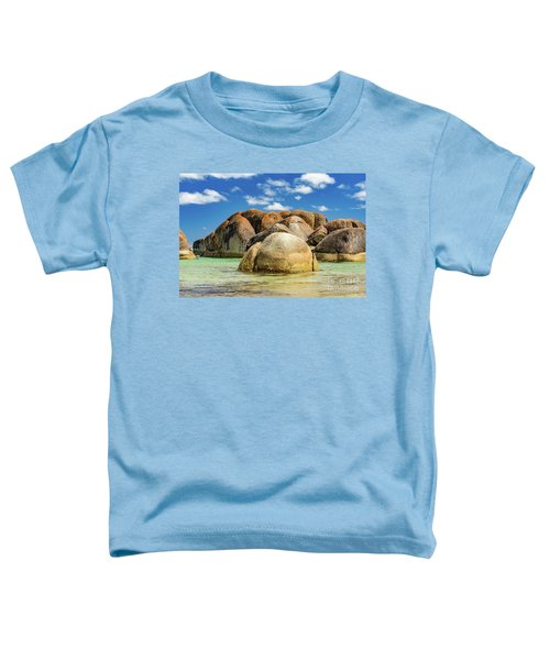 William Bay Toddler T-Shirt