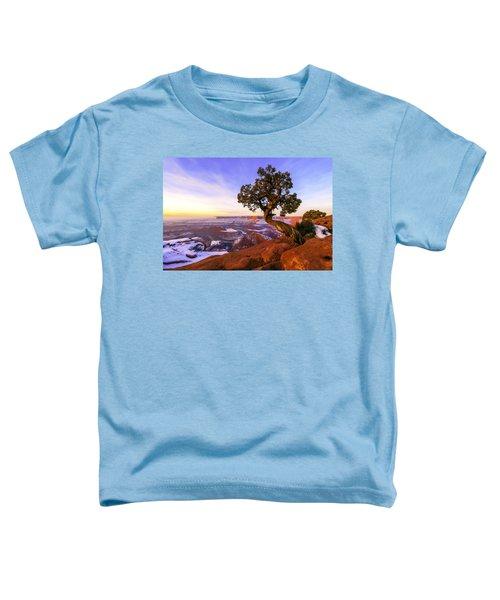 Winter At Dead Horse Toddler T-Shirt