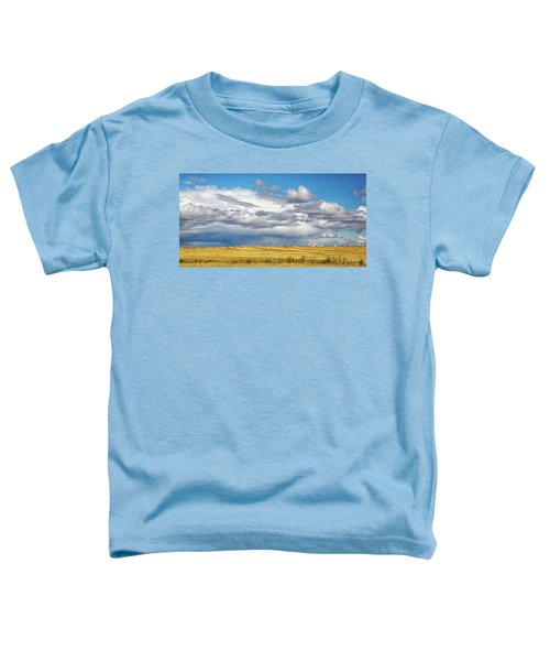 Big Sky Montana Toddler T-Shirt