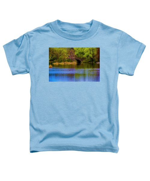 Bridge In Central Park Toddler T-Shirt