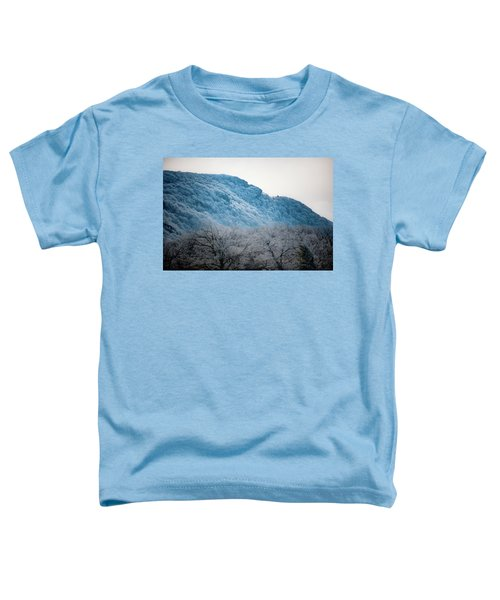 Cresting Wave Toddler T-Shirt