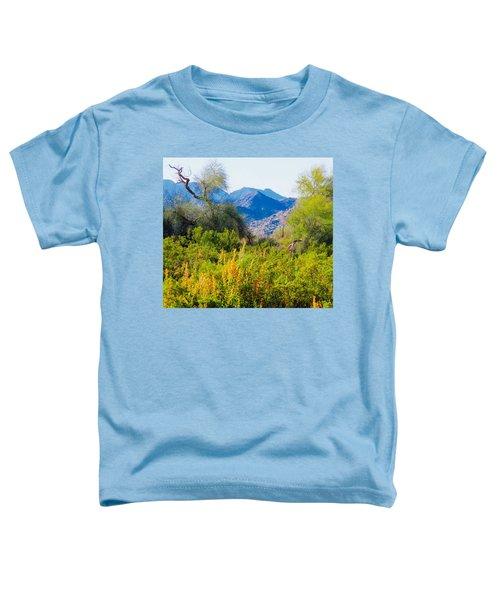 Deep Desert Valley In A Sonoran Desert Spring Toddler T-Shirt