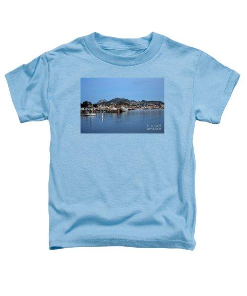 Evening In Morro Bay Toddler T-Shirt