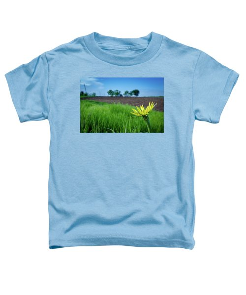 Goat's Beard On Nelson Farm II Toddler T-Shirt