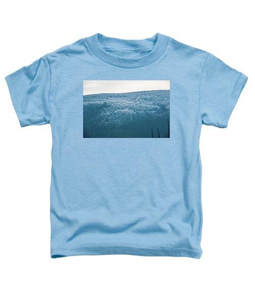 Hoarfrost Blue Mountain Toddler T-Shirt