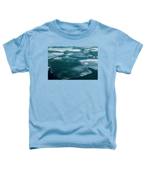 Ice 2 Toddler T-Shirt