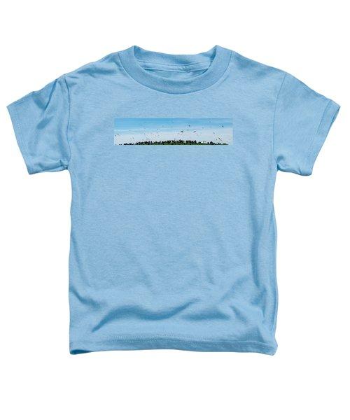 Kite Fest Panorama Toddler T-Shirt