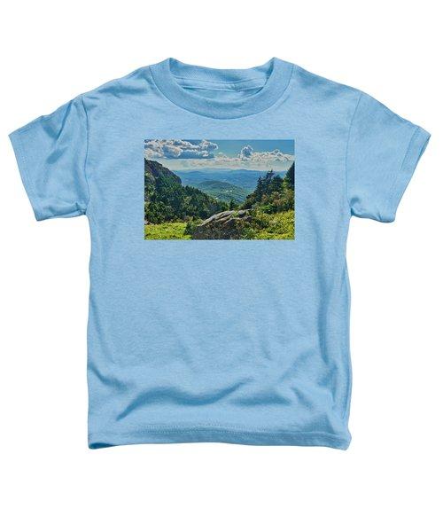 Parkway Overlook Toddler T-Shirt