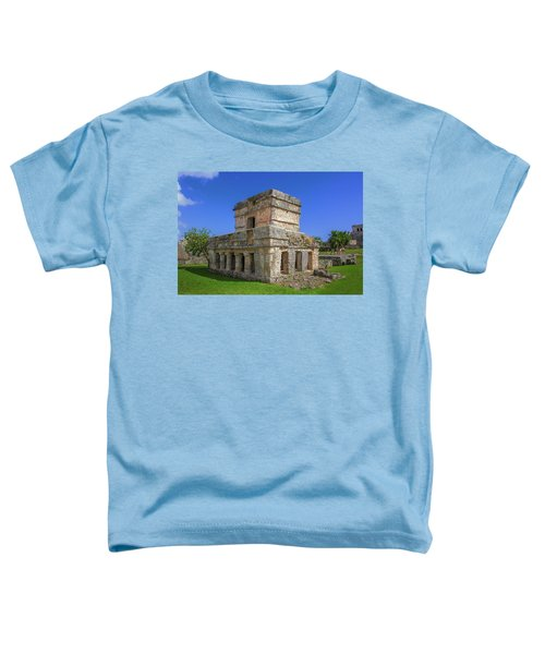 Temple Of The Frescoes Toddler T-Shirt