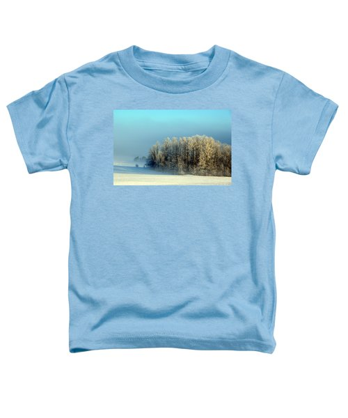 Winter's Heavy Frost Toddler T-Shirt