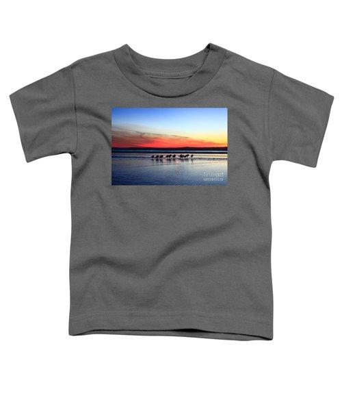 Shorebird Sunset Toddler T-Shirt