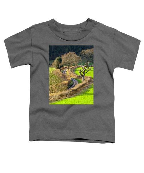 Winding Country Lane Toddler T-Shirt