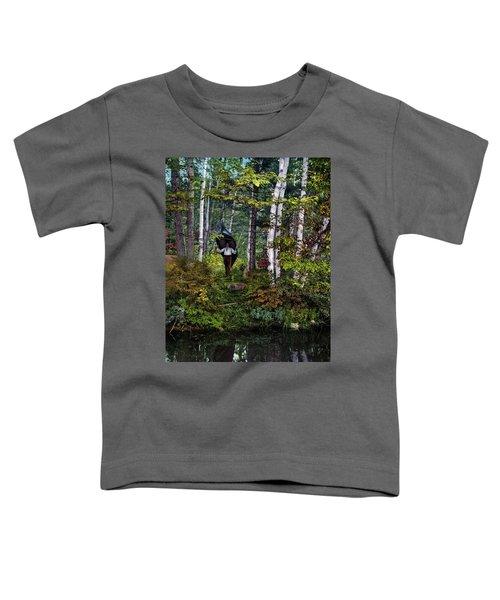 Adirondacks, C1902 Toddler T-Shirt