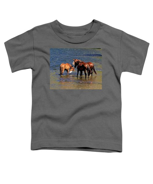 Arizona Wild Horses On The Salt River Toddler T-Shirt