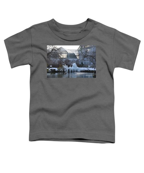 Belle Isle Conservatory Pond 2 Toddler T-Shirt