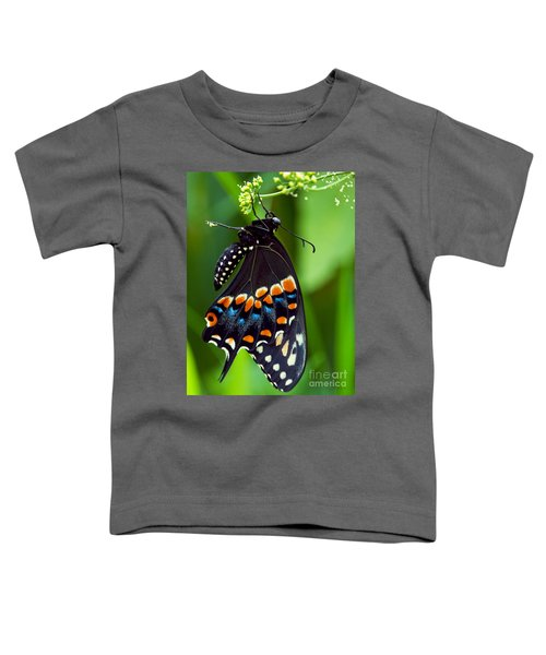 Black Swollowtail  Toddler T-Shirt