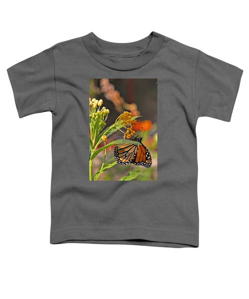 Clinging Butterfly Toddler T-Shirt