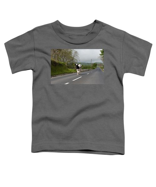 Cow Walks Along Country Road Toddler T-Shirt