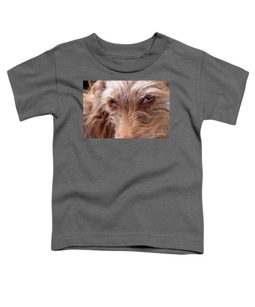 Dog Stare Toddler T-Shirt