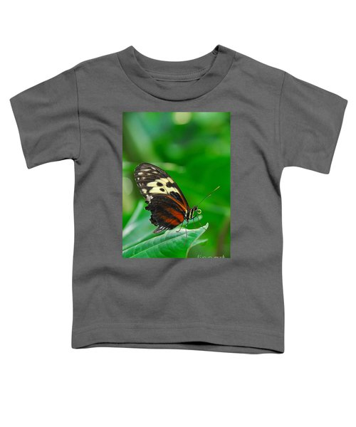 D5l15 Butterfly At Franklin Park Conservatory Toddler T-Shirt