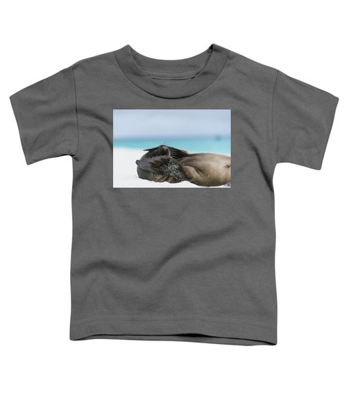 Galapagos Sea Lion Pup Covering Face Toddler T-Shirt