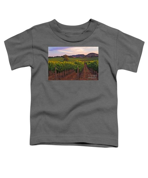Knight's Valley Summer Solstice Toddler T-Shirt