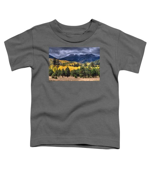 Lockett Meadow Toddler T-Shirt