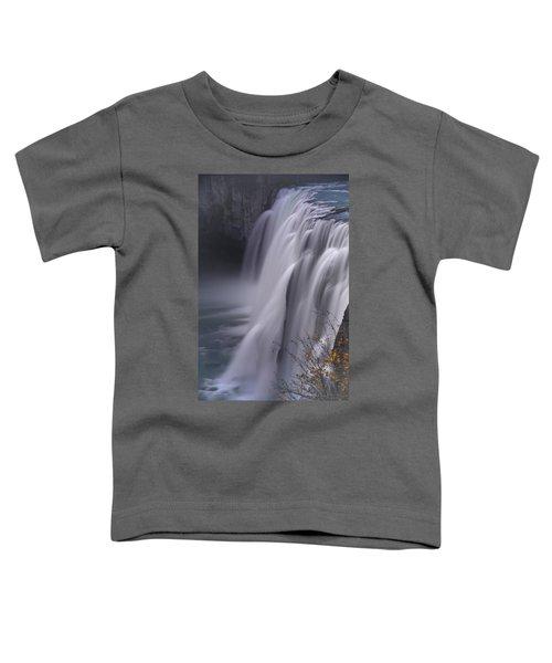 Mesa Falls Toddler T-Shirt