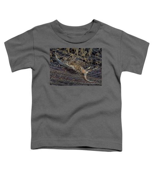 Nudibranch Sitting On A Pen Shell Toddler T-Shirt